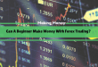 Can A Beginner Make Money With Forex Trading?