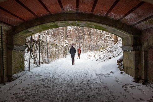 Winter-5-(Tagger-Yancey)