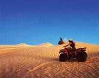 Quad-Bike-Sahara-Pillar-11-
