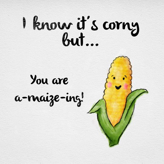Corny Jokes Make You Laugh