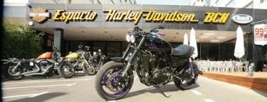Espacio Harley Davidson
