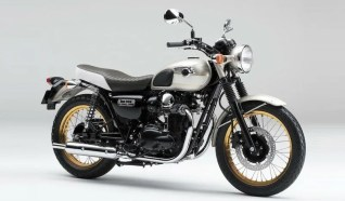 W800special edition 2015 800x400