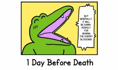 the-crocodile-that-dies-in-100-days