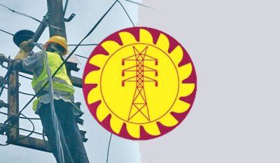 CEB losses soar to Rs. 85 bn in 2019 | Daily News
