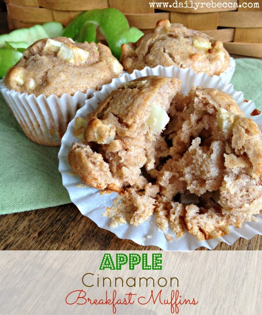 apple cinnamon breakfast muffins
