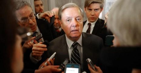 Image result for Lindsey Graham Immigration