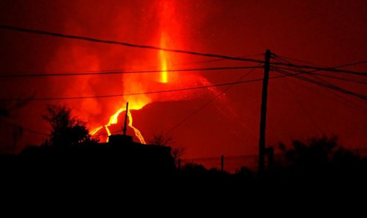 La Palma volcano: Drones to launch in 'last chance' attempt to rescue dogs trapped by lava