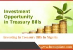 Investing In Treasury Bills In Nigeria