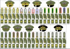 Nigerian Navy Ranks, Salaries, Symbols, Logo & Prestige.