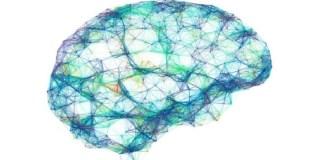 Machine translates brainwaves into sentences