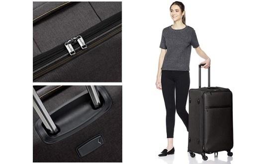 Amazon Basics Hearthered Best Luggage for International Travel