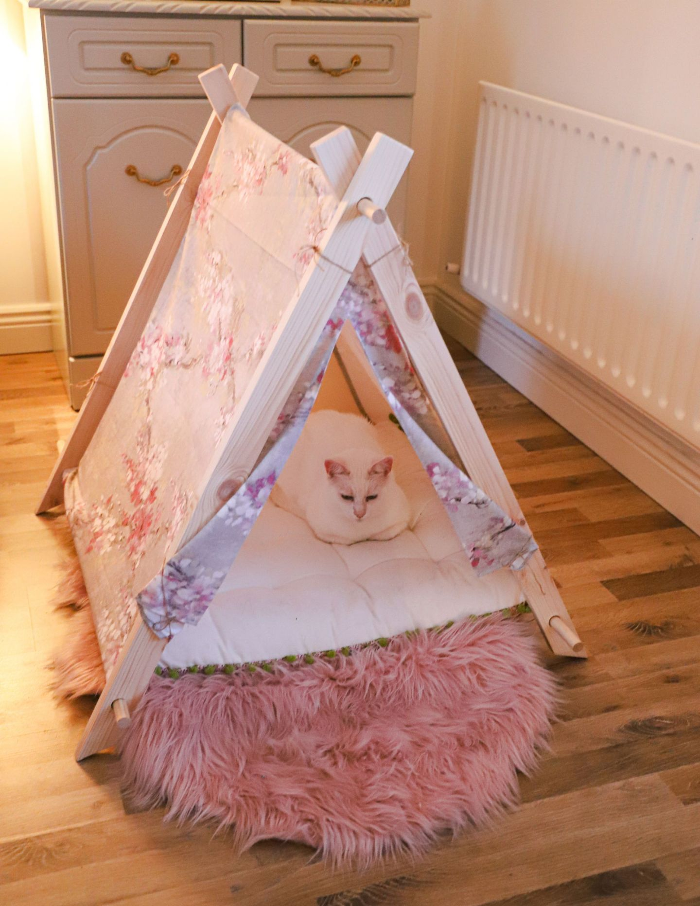 Pet DIY's, How to sew a cat collar and pet tent