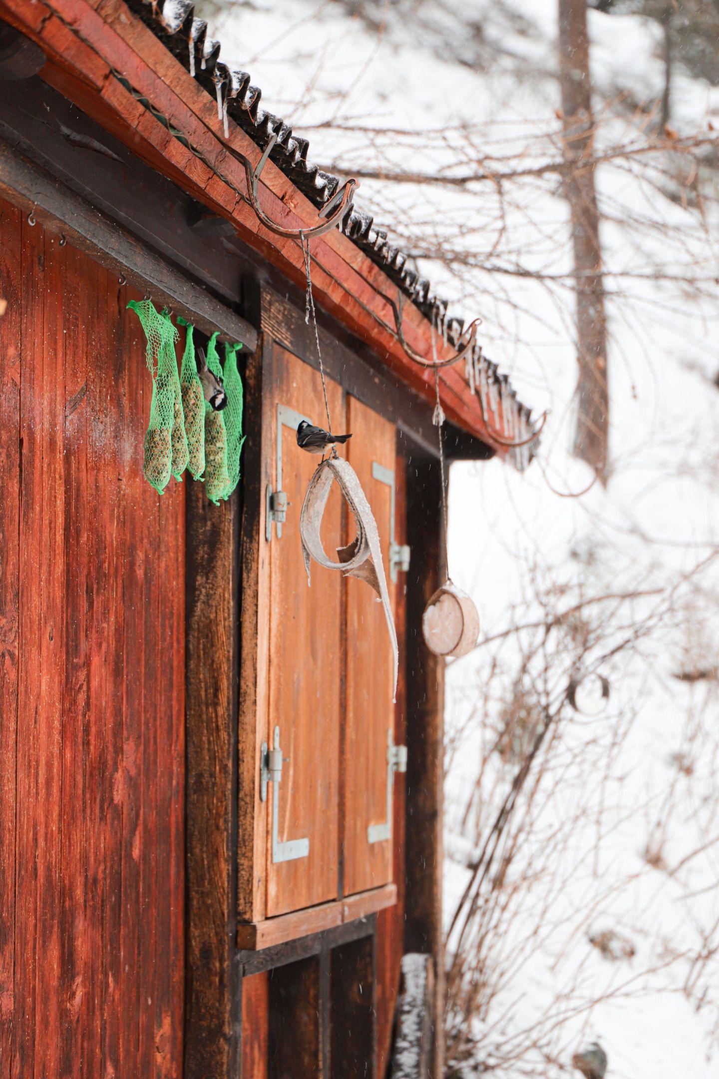 Zermatt, A Solo Snowy Switzerland Adventure