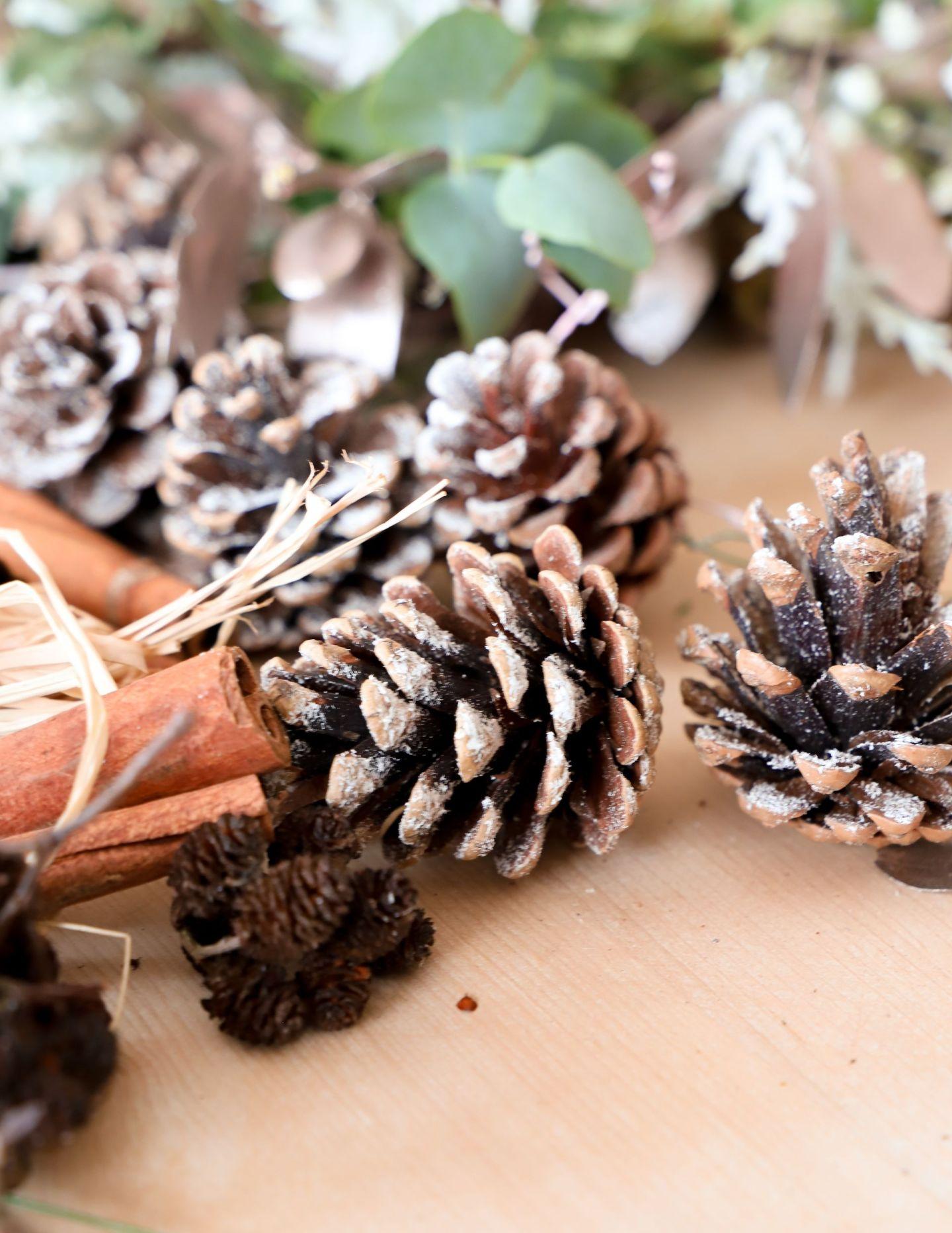 DIY Fresh Christmas WreathDIY Fresh Christmas Wreath