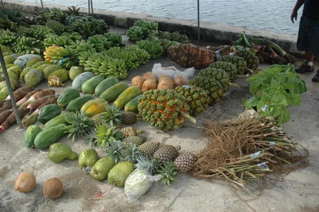 DSC 0005 l - La Isla Kitava y su Dieta Perfecta