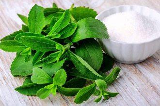 stevia2 - La Stevia, el Edulcorante Perfecto
