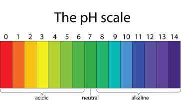 Εισαγωγή στην έννοια του pH