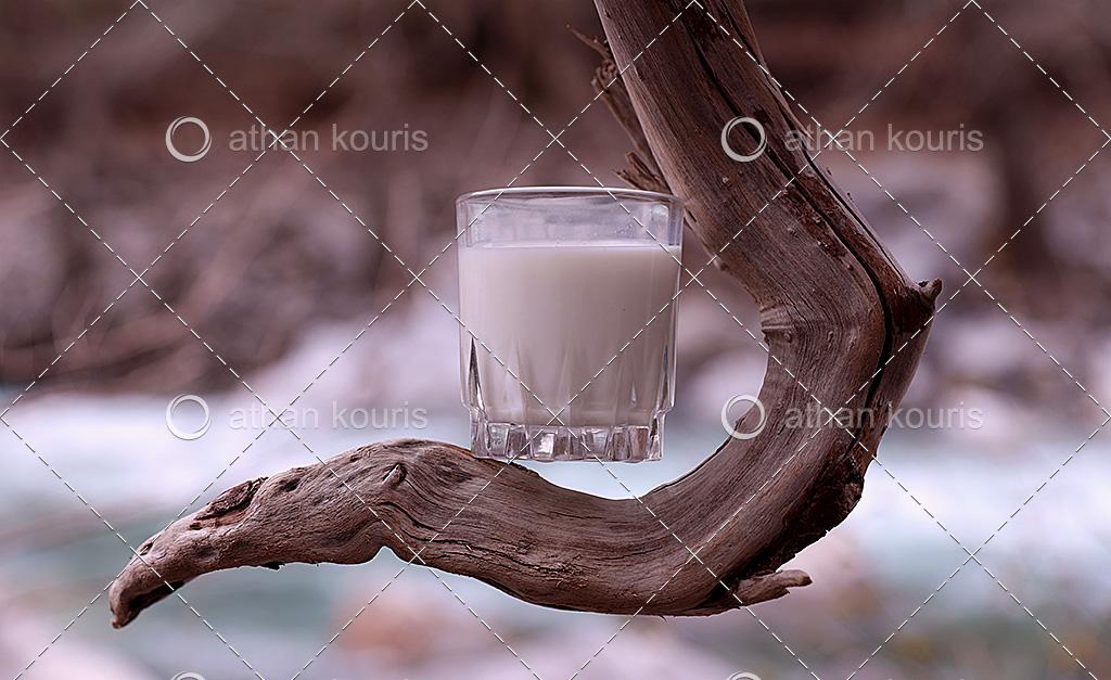 πρωτοσέλιδο - Δείτε ποιο γάλα έχει την μεγαλύτερη και την μικρότερη περιεκτικότητα σε πρωτεΐνη