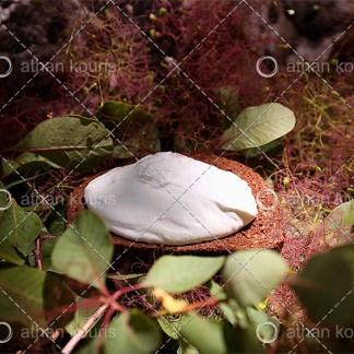 photo τυρί Γαλοτύρι P-10046 αγορά φωτογραφία γαλοτύρι
