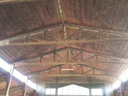 One of the things that stood out to Hubs about the freestall barn is that there is no wood! Even the trusses of the building were concrete.