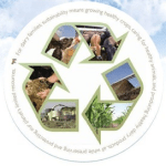 Is Modern Dairy and Animal Agriculture Sustainable?