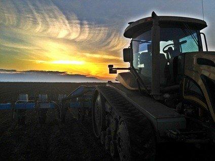 Planting corn