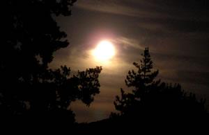 beautiful_harvest_moon.jpg