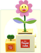 Gwen's newest toy, the Cosmo Flower Cube!