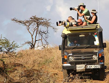 sec safari