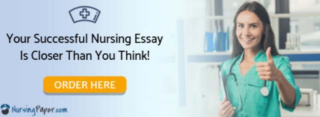 🔍 Best Essay Writing Services