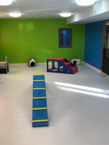 DDD Small Dog Play Area