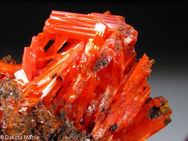 Crocoite Mineral Specimen For Sale