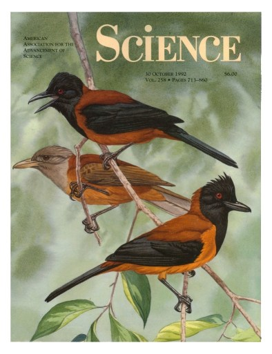 1992 cover Science Pithoui.jpg