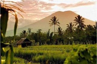 Gunung Dempo, Sumatra Selatan. (inet)