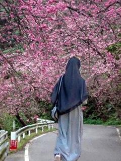 Ilustrasi. (amidda.blogspot.com)