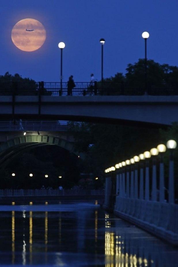 Pesawat terbang melintas di depan supermoon yang terbit di Rideau Canal, Ottawa, Sabtu (12/7/2014). (Blair Gable / Reuters)