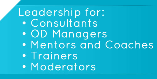 Leadership for Coaches, Consultants, Trainers, Mentors, OD Managers