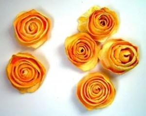 rosassecas