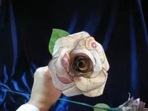 rosadepapel10