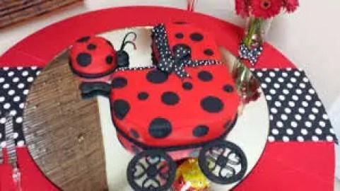 Ladybug-baby shower1jpg