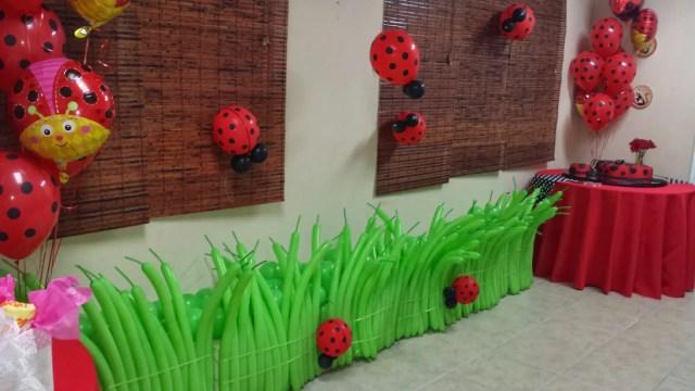 Ladybug-baby shower4