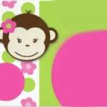 monkey23