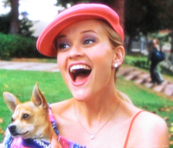 https://i1.wp.com/www.daleisphere.com/wp-content/uploads/legally-blonde-2001-reese-whitherspoon-holding-her-dog-bruiser.jpg