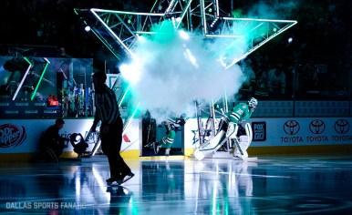Dallas Sports Fanatic (1 of 21)