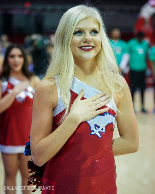 Dallas Sports Fanatic (1 of 41)
