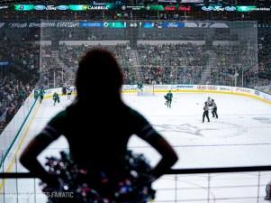 Dallas Sports Fanatic (25 of 27)