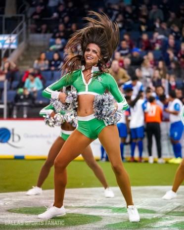 Dallas Sports Fanatic (5 of 12)