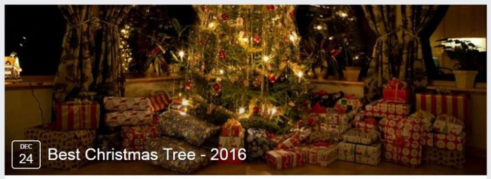Best Christmas Tree Competition of Dallas