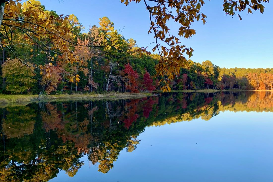 Daingerfield State Park - Fall Foliage near Dallas