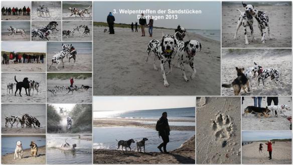 Colage-Welpentreffen-2013-11.10.2013-10-43-54